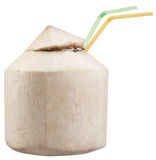 Coconut Water. In the nut. File contains clipping paths Royalty Free Stock Image