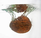 Coconut in water splash Royalty Free Stock Photos