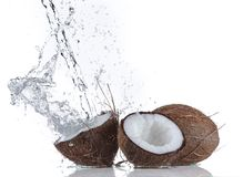 Coconut with water splash Royalty Free Stock Images