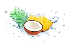 Coconut and watermelon splash Stock Images