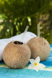 Coconut Waters with Plumeria Royalty Free Stock Photo