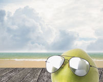 Coconut wear sunglasses, Summer concept Royalty Free Stock Photo