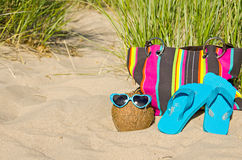 Coconut wearing sunglasses Stock Images