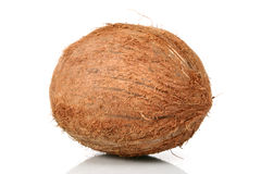 Coconut on White Royalty Free Stock Image