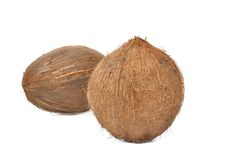Coconut on white background Royalty Free Stock Photography