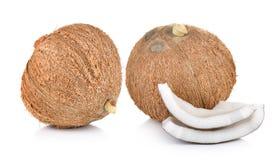 Coconut on white background Stock Image