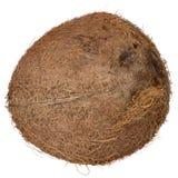 Coconut Stock Photos