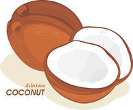 Coconut on the white royalty free stock photography
