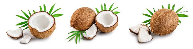 Coconut With Leaves Isolated On White Background. Set Or Collection Royalty Free Stock Photo