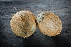 ,coconut on wood, Royalty Free Stock Images