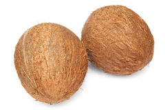 Coconuts. On the white background Royalty Free Stock Photography