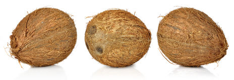 Coconuts. Three coconuts isolated on white background Royalty Free Stock Images