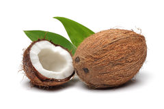 Coconuts. Fruit isolated on white background stock photography