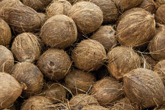 Coconuts. Spreads in a raw background Stock Photo