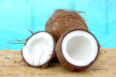Coconuts. In front of a pool Royalty Free Stock Photo