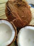 coconuts Immagine Stock Libera da Diritti