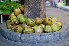 Coconuts in asian market Stock Photos