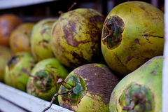 Coconuts in asian market Royalty Free Stock Photography