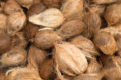 Coconuts background. Tropical fruits natural background. Fresh coconuts at market place Royalty Free Stock Photos