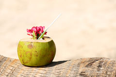 Coconuts on the beach Stock Images