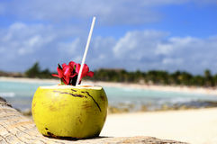 Coconuts on the beach Stock Photos