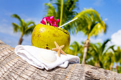 Coconuts on the beach Royalty Free Stock Images