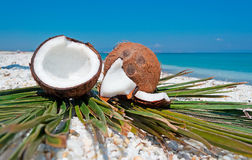 Coconuts and beach Royalty Free Stock Images