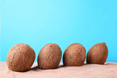 Coconuts. On the beach sand Royalty Free Stock Photo