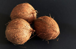Coconuts on the black background Royalty Free Stock Photo
