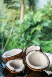 Coconuts on the black glass table isolated over blurred palm trees background Stock Photography
