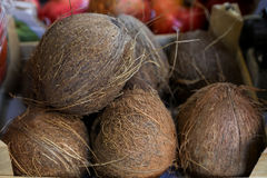 Coconuts in a box for sale at the market. Stock Photos