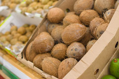 Coconuts in boxes in supermarket Stock Images