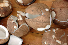 Coconuts. The brown coconuts without shell Royalty Free Stock Photography