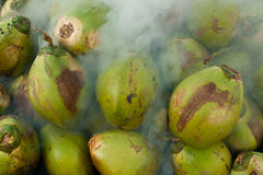 Coconuts burning. The fresh coconuts from the garden to burn royalty free stock photos