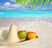 Coconuts in Caribbean beach on mexico sombrero hat Stock Images