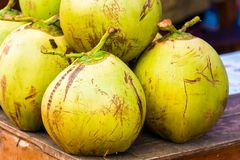 Coconuts in the city market in Louangphabang, Laos. Close-up. Stock Photography