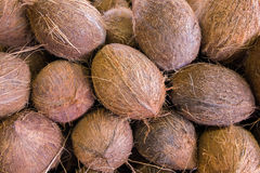 Coconuts. Close up view of peeled coconuts Stock Photos