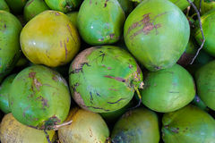 Coconuts. Close up view of unpeeled coconuts Royalty Free Stock Photography