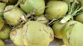 Coconuts closeup Royalty Free Stock Image