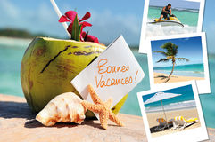 Coconuts cocktail, starfish and pics. Coconuts cocktail, starfish, sea outdoor with hlidays pics stock photo