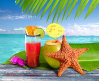 Coconuts cocktails straw tropical beach starfish Stock Images