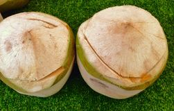 Coconuts. Coconut on green background Stock Photos