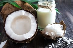 Coconuts, coconut milk and shavings, and a palm branch royalty free stock photography