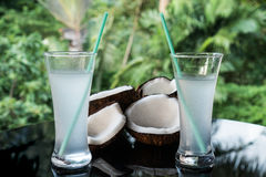Coconuts and coconut water on the black glass table isolated over blurred palm trees background Royalty Free Stock Image