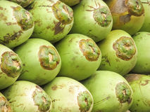 Coconuts for coconut water. Coconuts sold for hea;thy ,pure water Royalty Free Stock Photos