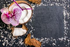 Coconuts with coconuts flakes and orchid on the grey stone backg. Round Stock Image