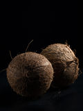 Coconuts. On a dark background Stock Photo