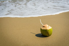 Coconuts with drinking straw on the sand. At the sea Stock Photos