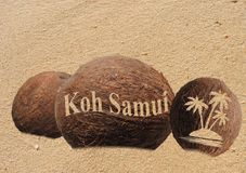 Coconuts in the sand. Coconuts with an engraving in the sand Stock Photo