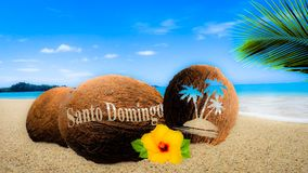 Coconuts in the sand. Coconuts with an engraving in the sand Royalty Free Stock Photo
